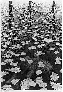 <i>Three Worlds</i> (Escher) Lithograph by Dutch artist M. C. Escher