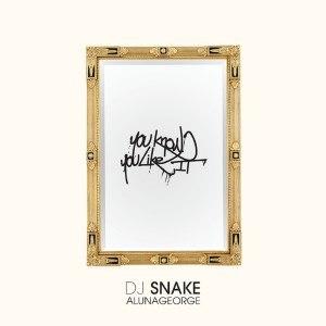 You Know You Like It - Image: You Know You Like It DJ Snake