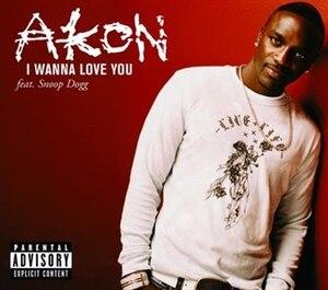 I Wanna Love You (Akon song) - Image: Akon I Wanna Love You