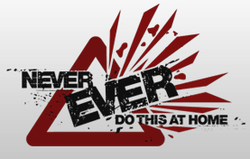 Never Ever Do This At Home logo.png