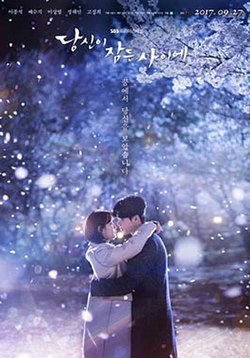 While You Were Sleeping (2017 TV series).jpg