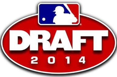 2014 MLB draft logo