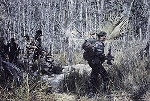 An Australian SAS patrol.