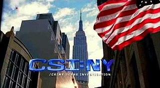 <i>CSI: NY</i> television series (2004-2013)