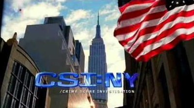 Picture of a TV show: Csi: Ny