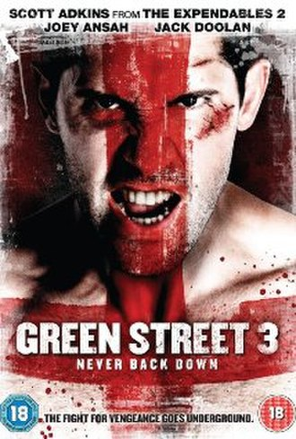 Green Street 3: Never Back Down - Image: Green Street 3 Never Back Down