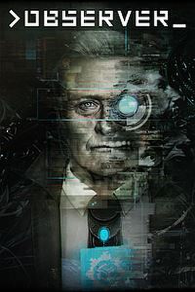 Picture of a game: Observer