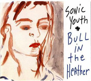 Bull in the Heather 1994 single by Sonic Youth