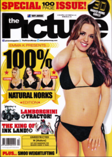 The Picture (magazine).png