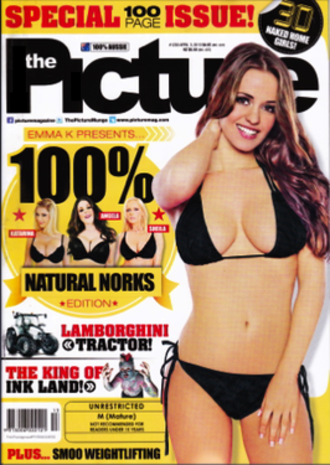 The Picture (magazine) - 3 April 2013 issue of Picture