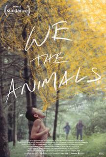 <i>We the Animals</i> (film)