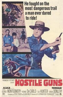 Hostile-guns-movie-poster-1967-1020259575.jpg