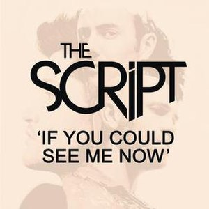 If You Could See Me Now (The Script song) - Image: If+You+Could+See+Me+ Now