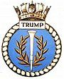 TRUMP badge-1-.jpg