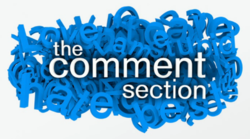 The Comment Section logo.png