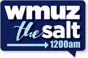 WMUZ (AM) - Image: WMUZ thesalt 1200am logo