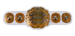 IWGP Intercontinental Championship.PNG