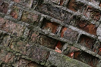 Repointing - Spalling