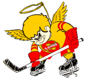 Minnesota Fighting Saints - The second incarnation's logo (identical to the first, only with the original blue changed to red), from the 1976–77 season.