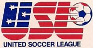 United Soccer League (1984–85) - Image: United Soccer League (1984)