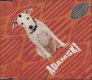 Killer (Adamski song) 1990 single by Adamski
