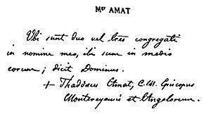 Thaddeus Amat y Brusi