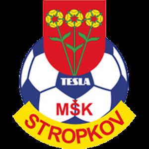 MŠK Tesla Stropkov - Image: Msk tesla stropkov