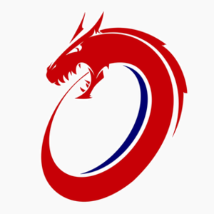 Norway national rugby union team - Image: Norway logo