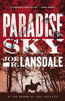Image result for book cover paradise sky lansdale