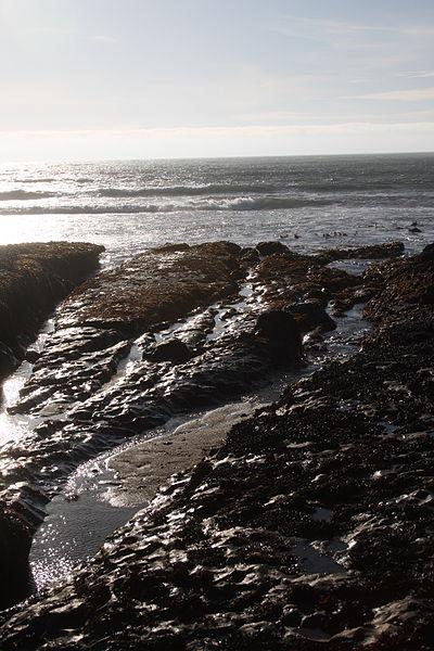 Tide Predictions – Año Nuevo