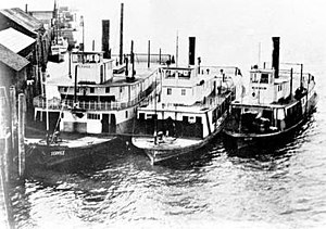 Cowlitz (sternwheeler) - Stern-wheel steamers ''Service'' (center), Cowlitz (center), and ''Nestor'' (right), tied up at a dock, probably at Rainier, Oregon, some time between 1917 and 1929.