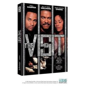 The Visit (2000 film) - Image: The Visit film poster