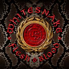 Flesh & Blood (Whitesnake album) - Wikipedia