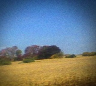 <i>Benji</i> (album) 2014 studio album by Sun Kil Moon