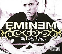 220px-Eminem_-_The_Way_I_Am_CD_cover.jpg