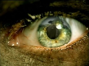 Eyes of the Insane - A screenshot from the music video
