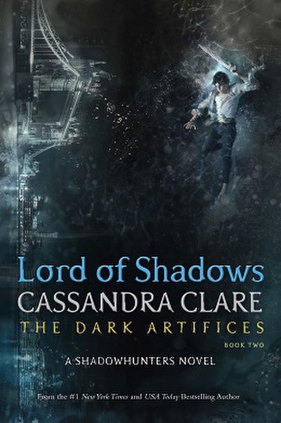 Picture of a book: Lord Of Shadows