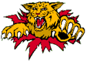 Monkton Wildcats Logo.png