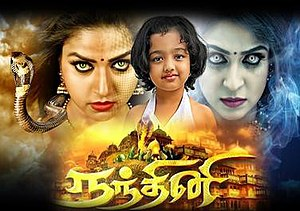 Nandini (TV series) - Cover Photo of Nandini