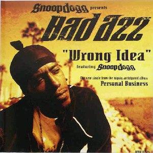 Wrong Idea - Image: Wrong Idea cover