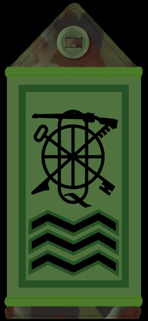 Company quartermaster sergeant - CQMS Insignia (Irish Army)
