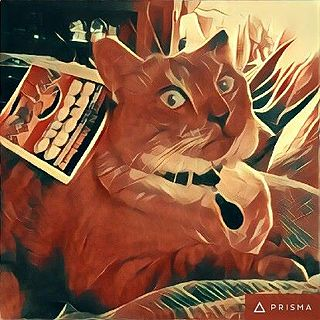 Prisma (app) a photo-editing application