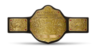 Former championship created and promoted by the American professional wrestling promotion WWE
