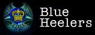 <i>Blue Heelers</i>