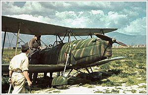 Caproni Ca.164 - Image: Caproni Ca.164