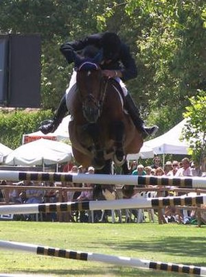 Jumping position - Poor leg position often makes it difficult for the rider to stay with the horse's efforts