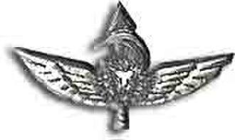 Netzah Yehuda Battalion - Warrior Pin of Nahal Haredi Combat Soldiers