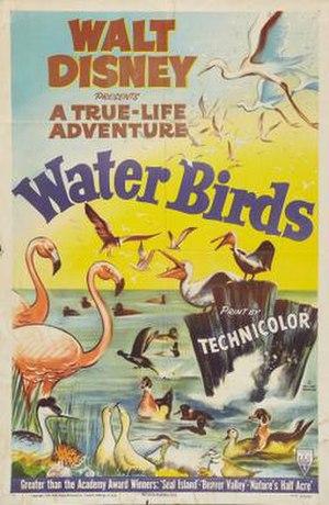 Water Birds - Film poster