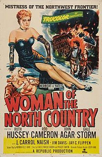 <i>Woman of the North Country</i>
