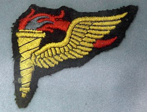 Pathfinder (military) - One version of the patch worn on the uniforms of American pathfinders who served during World War II.